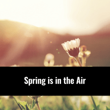 Spring in the air, Alternative Medicine Associates in Huntsville and Madison Alabama